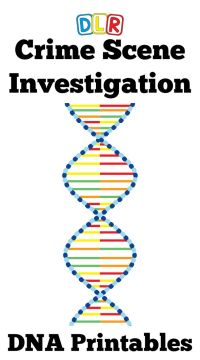 1000+ ideas about Dna Fingerprinting on Pinterest