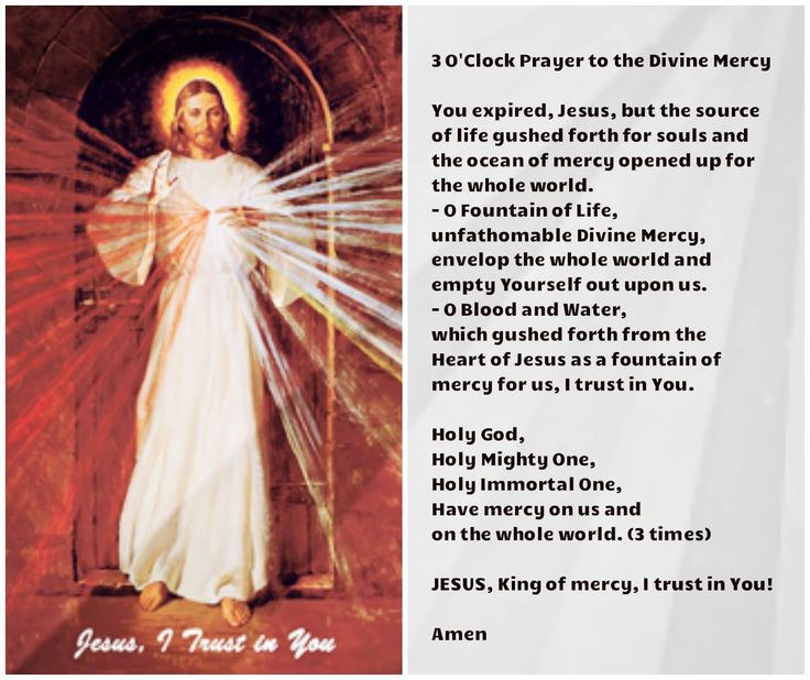 how to pray the divine mercy chaplet in latin
