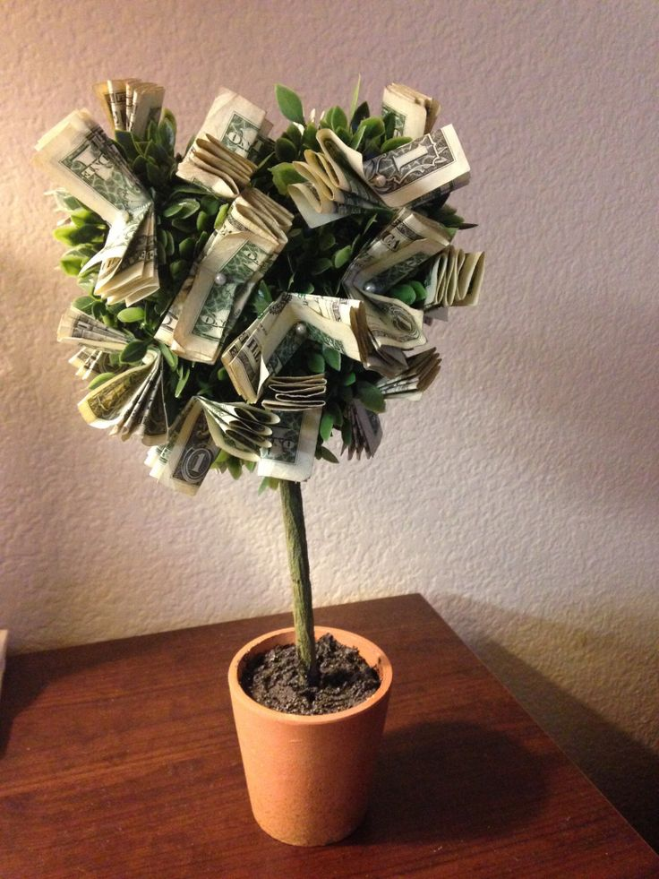 Money Tree Just put a ribbon or some special touch to the base of the plant and viola MONEY