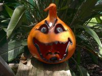 1000+ images about Gourds