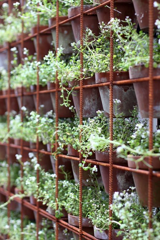 25 Best Ideas About Herb Wall On Pinterest Kitchen Herbs Wall