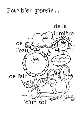 Kids Worksheet; Simple French Words On What Plants Need to