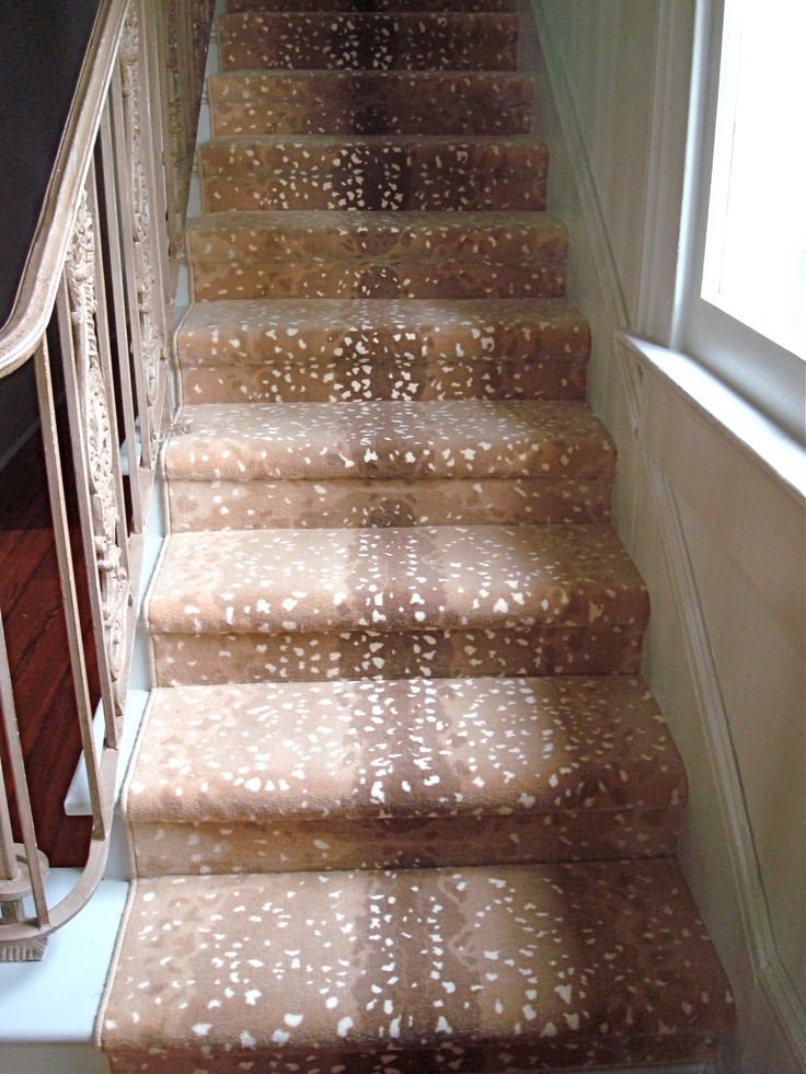 1000 images about Trend Antelope Carpet on Pinterest