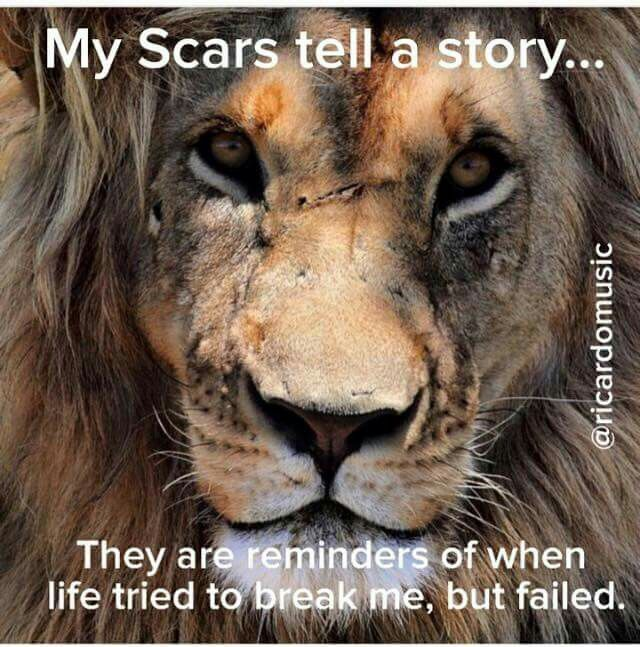 Bible Lioness Verse