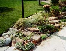 22 Best Images About Rock Garden On Pinterest Gardens Garden