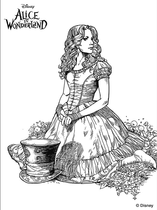 92 best images about Alice in Wonderland on Pinterest