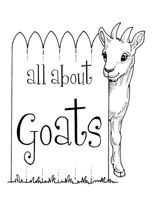 17 Best images about Three Billy Goats Gruff on Pinterest