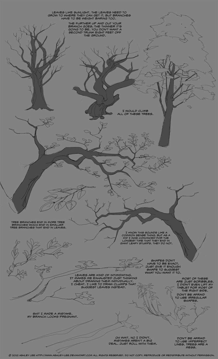 How to Draw Realistic Trees, Plants Bushes and Rocks: a