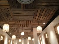 25+ best Cheap Ceiling Ideas on Pinterest | Cheap ceiling ...