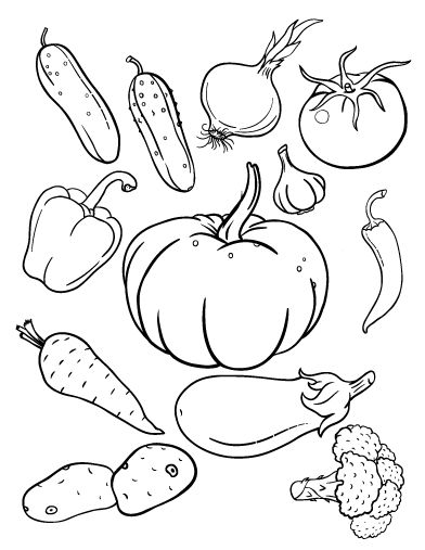 1000+ images about Fruit and Veggies theme on Pinterest