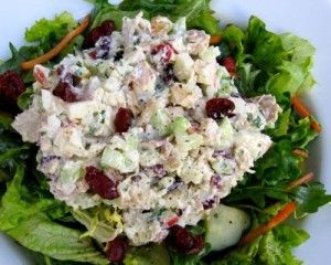 Chicken Salad with Apples and Cranberries | Weight Watchers Recipes
