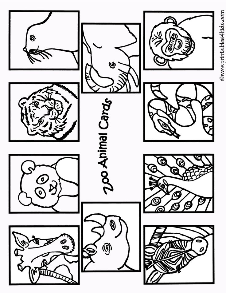 zoo-animals-coloring-cards1 : Printables for Kids