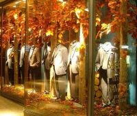 Best 25+ Autumn Window Displays ideas on Pinterest | Shop ...