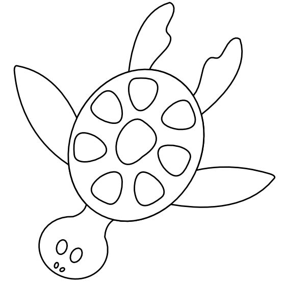 Colorful Animal Sea Turtle Black White Line Art Scalable
