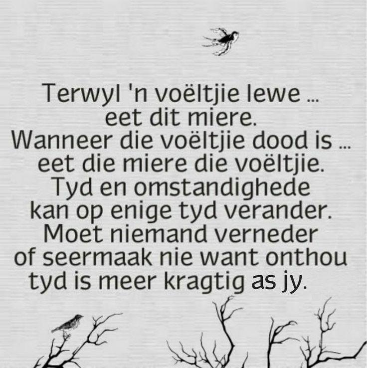 123 best images about Afrikaans on Pinterest