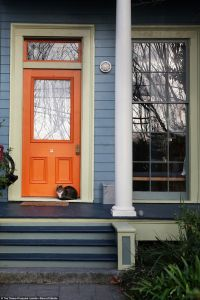 17+ best ideas about Orange Front Doors on Pinterest