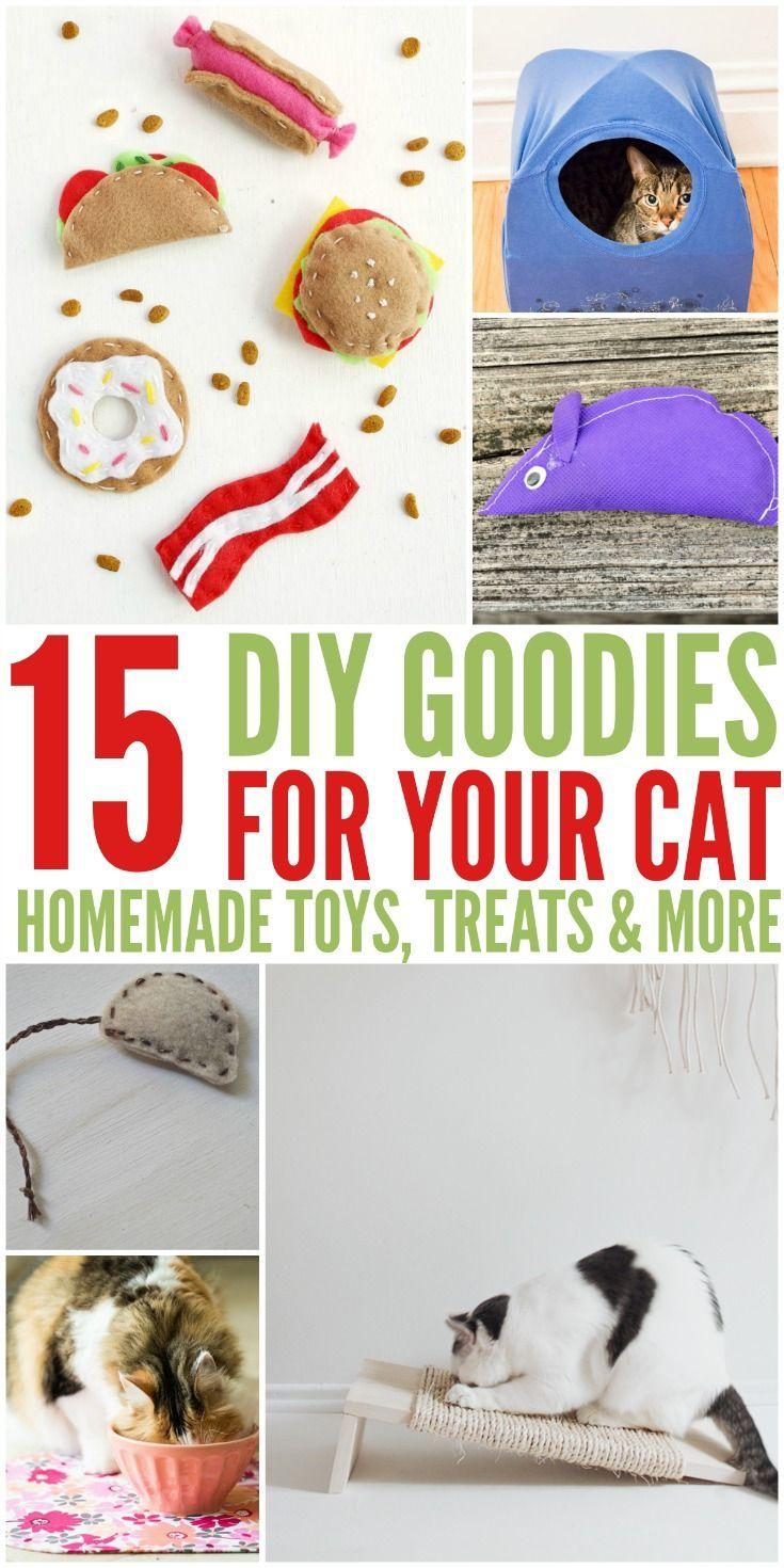 Best 20 Homemade Cat Toys Ideas On Pinterest Diy Cat