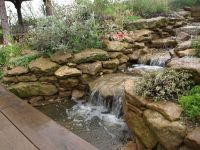 17 Best ideas about Natural Pond on Pinterest | Natural ...