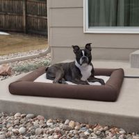 Best 25+ Heated dog bed ideas on Pinterest