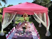outdoor princess party table decorations