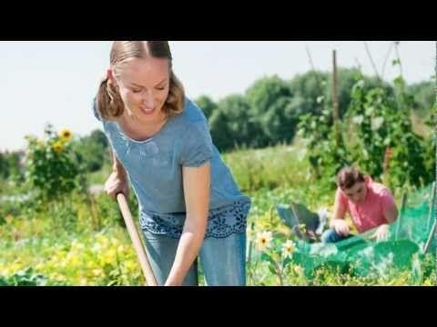 garten basics gartnern fur anfanger buch mascha schacht gu - boisholz, Garten und erstellen