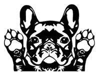 25+ best ideas about French bulldog art on Pinterest