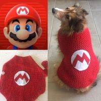 17 Best ideas about Super Mario Costumes on Pinterest ...
