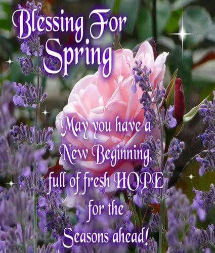 107 best images about SPRING IS IN THE AIR on Pinterest