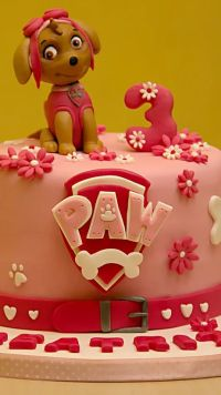 10 Best ideas about Paw Patrol Cake Decorations on