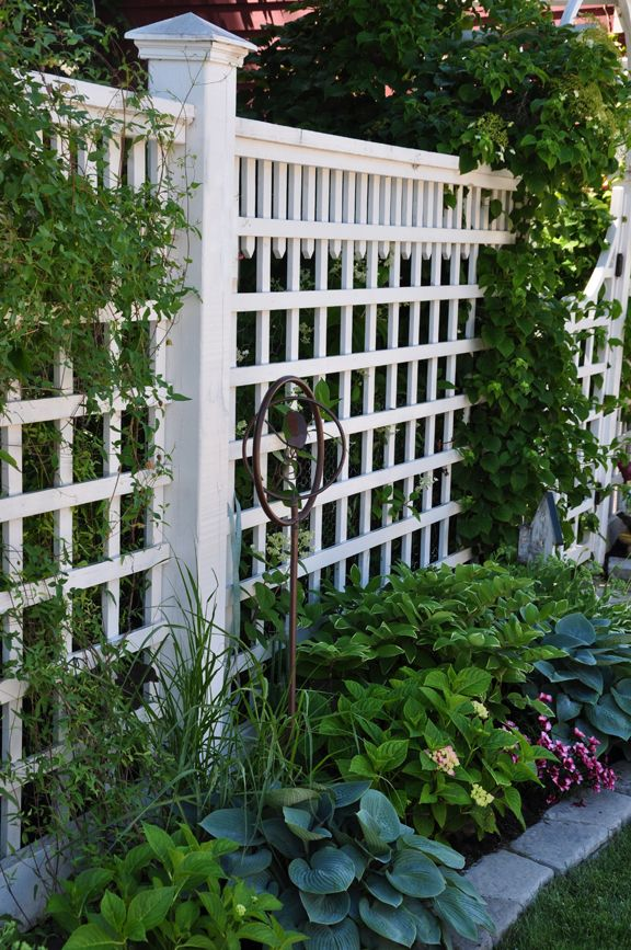 25 Best Ideas About White Fence On Pinterest Backyard Fences