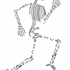 A Labeled Diagram Of The Skeletal System What Is Schematic Circuit Aaron Kuehn Print - This And Muscles Would Be Awesome!   Wish List! Pinterest ...