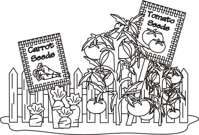 15 best images about 4-H Garden Coloring Pages on