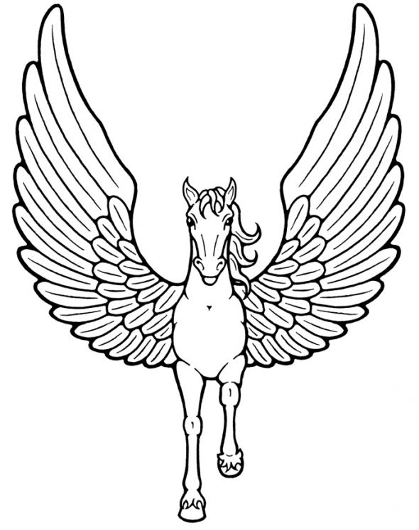 44 best images about PEGASUS THE FLYING HORSE on Pinterest