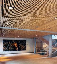 Woodgrille Grill Wood Ceiling and Wall System Image ...