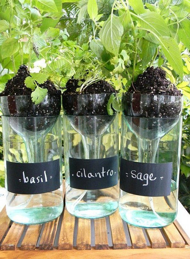 25 Best Ideas About Wine Bottle Planter On Pinterest Cutting