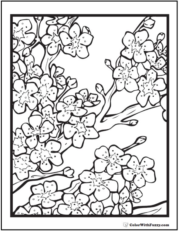 1000+ ideas about Flower Coloring Pages on Pinterest