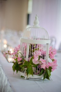 101 best images about VINTAGE DECORATED BIRDCAGES on ...