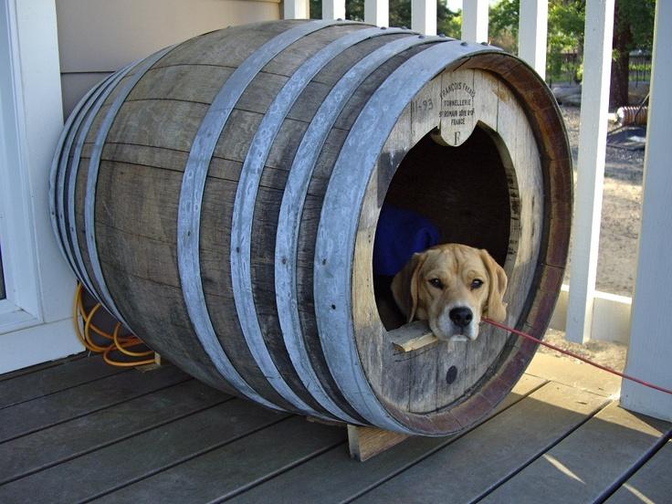 Wine barrel dog house RIVINO Benny  DIY  Barrel