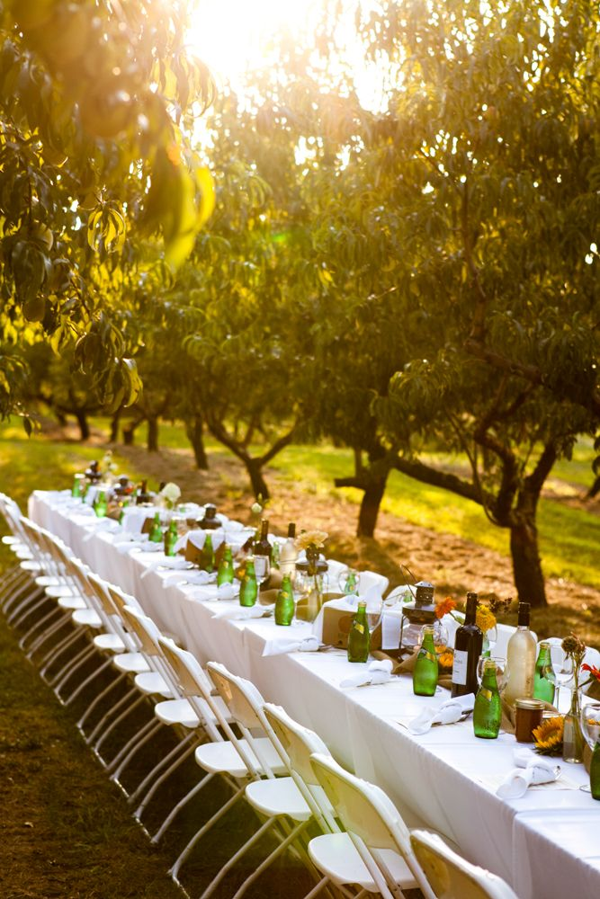 Attend A Farm To Table Dinner Like This One From Branstool Orchards Utica Ohio Heres The Info