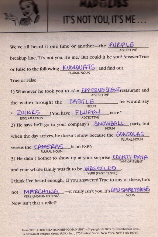 Dirty Mad Libs For Adults Pics Photos To Mad Libs Too
