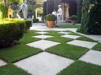 25+ best ideas about Arizona landscaping on Pinterest ...