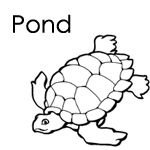 17 Best images about Preschool Pond Theme on Pinterest