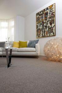 1000+ ideas about Grey Carpet on Pinterest | Carpets, Grey ...