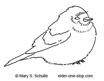 1000+ images about coloring pages birds on Pinterest