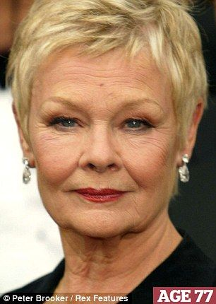 25 Best Ideas About Judi Dench Hairstyle On Pinterest Judi