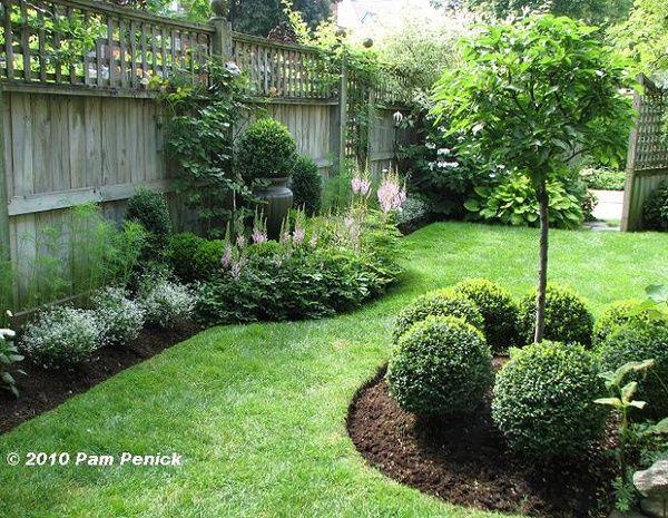 manicured lawn edging shrubs