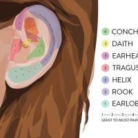 25+ best Tragus Piercing Pain ideas on Pinterest ...