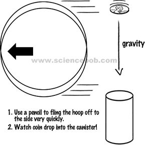 108 best images about STEM: Forces and Motion on Pinterest