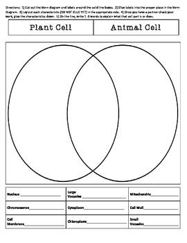 free printable venn diagram maker 220 volt electric motor wiring 452 best images about cells, cells on pinterest | cell structure, wall and science ...