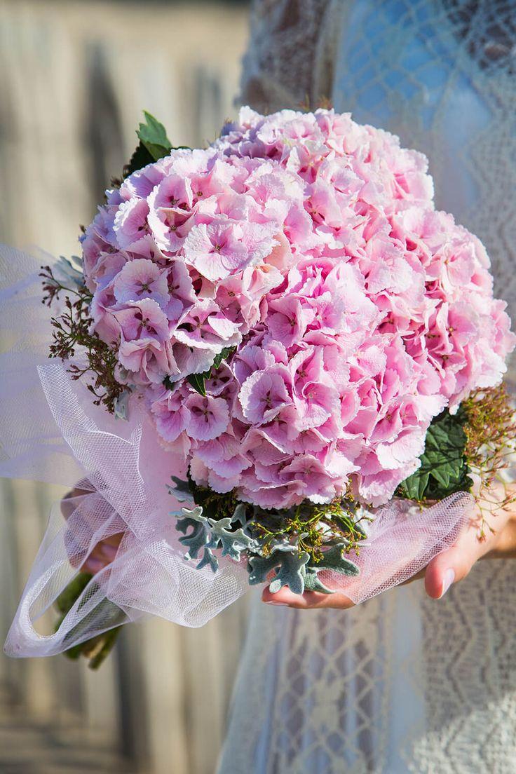Rosa Und Rosa unterschied zwischen rosa und pink rosen verzweigt mimi eden rosa wei bestellen